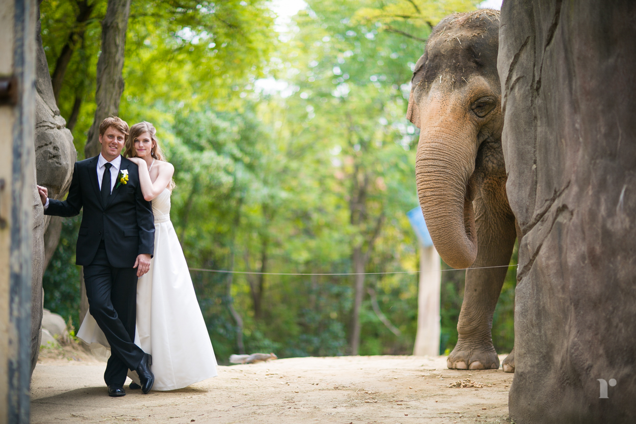 cincinnati wedding photographer robin mckerrell photography
